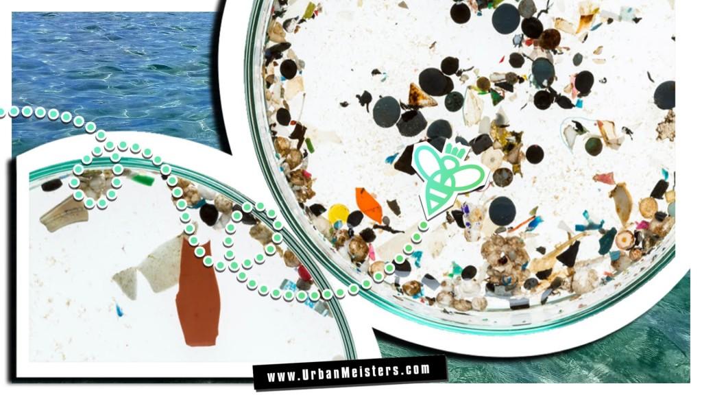microbeads marine pollution